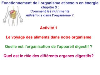 Fonctionnement de l'organisme et besoin en énergie chapitre 3 :  Comment les nutriments