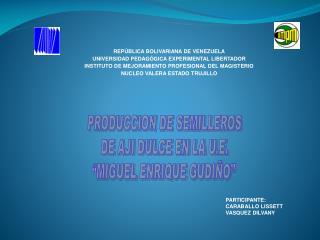 """PRODUCCION DE SEMILLEROS  DE AJI DULCE EN LA U.E. """"MIGUEL ENRIQUE GUDIÑO"""""""