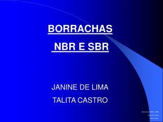 BORRACHAS  NBR E SBR JANINE DE LIMA TALITA CASTRO