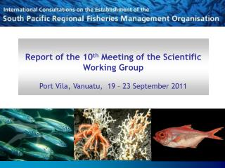 Report of the 10 th  Meeting of the Scientific Working Group