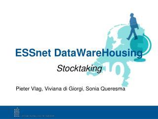 ESSnet DataWareHousing