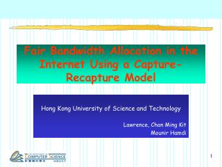 Fair Bandwidth Allocation in the Internet Using a Capture-Recapture Model