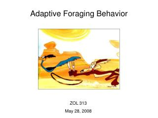 Adaptive Foraging Behavior