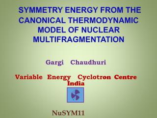Symmetry energy from the Canonical Thermodynamic Model of Nuclear Multifragmentation