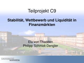 Teilprojekt C9 Stabilität, Wettbewerb und Liquidität in Finanzmärkten