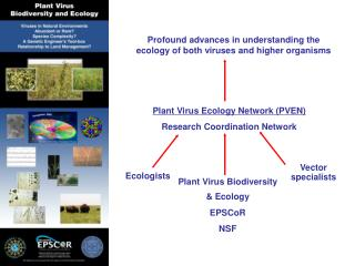Plant Virus Ecology Network (PVEN) Research Coordination Network