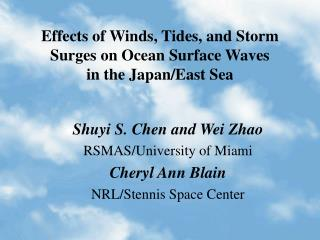 Effects of Winds, Tides, and Storm Surges on Ocean Surface Waves  in the Japan/East Sea