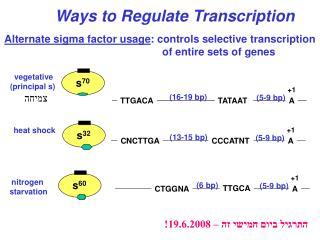 Alternate sigma factor usage : controls selective transcription