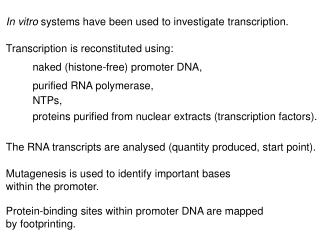 In vitro  systems have been used to investigate transcription.