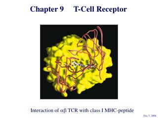 Chapter 9     T-Cell Receptor