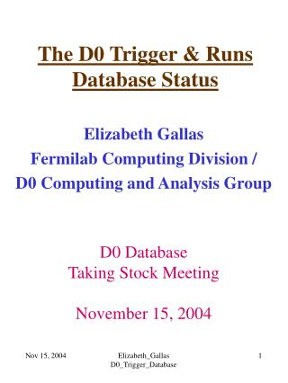 The D0 Trigger & Runs  Database Status