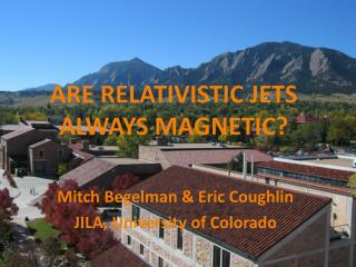 ARE RELATIVISTIC JETS ALWAYS MAGNETIC?