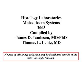 Histology Laboratories Molecules to Systems 2003 Compiled by James D. Jamieson, MD/PhD