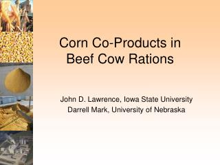 Corn Co-Products in  Beef Cow Rations
