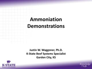 Ammoniation Demonstrations