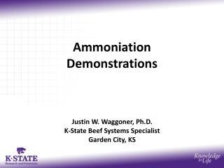 Ammoniation Demonstrations