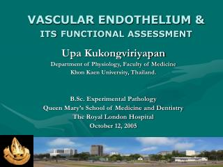 VASCULAR ENDOTHELIUM  ITS FUNCTIONAL ASSESSMENT