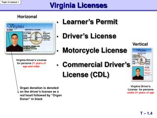 Learner's Permit Driver's License Motorcycle License Commercial Driver's License (CDL)