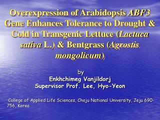 by   Enkhchimeg Vanjildorj Supervisor Prof. Lee, Hyo-Yeon