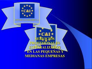 SERVICIOS  PROFESIONALES ESPECIALIZADOS  EN LAS PEQUEÑAS Y MEDIANAS EMPRESAS