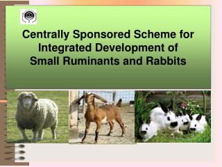 Centrally Sponsored Scheme for  Integrated Development of  Small Ruminants and Rabbits
