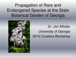 Propagation of Rare and Endangered Species at the State Botanical Garden of Georgia
