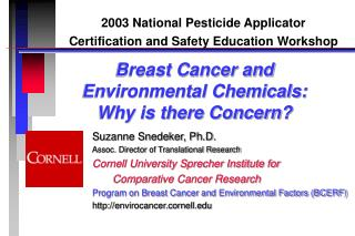Breast Cancer and  Environmental Chemicals:  Why is there Concern?