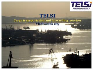 TELSI Cargo transportation and forwarding  services  Vladivostok city