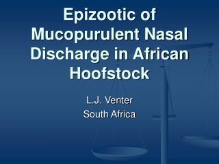Epizootic of Mucopurulent Nasal Discharge in African Hoofstock