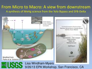 From Micro to Macro: A view from downstream