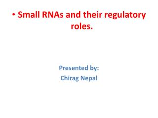 Small RNAs and their regulatory roles. Presented by: Chirag Nepal