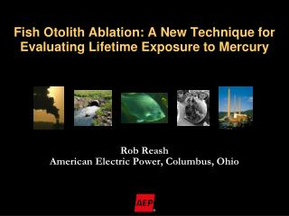 Fish Otolith Ablation: A New Technique for Evaluating Lifetime Exposure to Mercury