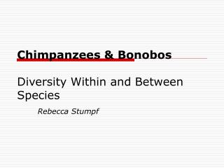 Chimpanzees & Bonobos Diversity Within and Between Species