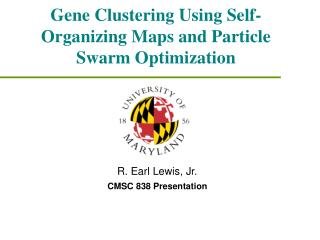 Gene Clustering Using Self-Organizing Maps and Particle Swarm Optimization