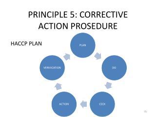 PRINCIPLE 5: CORRECTIVE ACTION PROSEDURE