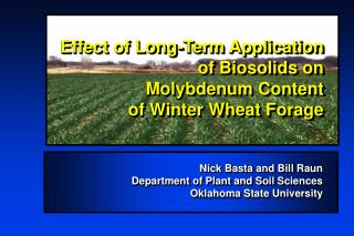 Effect of Long-Term Application of Biosolids on Molybdenum Content  of Winter Wheat Forage