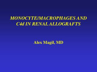 MONOCYTE/MACROPHAGES AND C4d IN RENAL ALLOGRAFTS