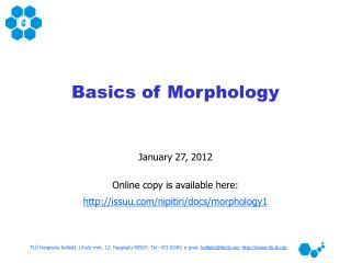 Basics of Morphology
