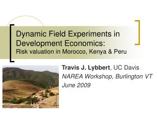 Dynamic Field Experiments in Development Economics: Risk valuation in Morocco, Kenya & Peru