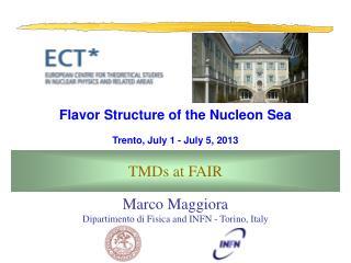 Marco Maggiora Dipartimento di Fisica and INFN - Torino, Italy