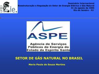 SETOR DE G�S NATURAL NO BRASIL