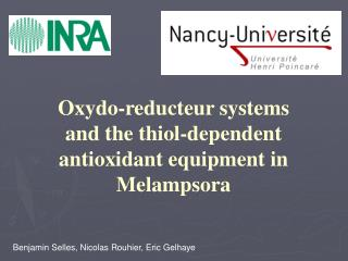 Oxydo-reducteur systems and the thiol-dependent antioxidant equipment in Melampsora