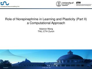 Role of Norepinephrine in Learning and Plasticity (Part II) a Computational Approach