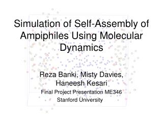 Simulation of Self-Assembly of Ampiphiles Using Molecular Dynamics