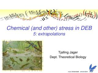 Chemical (and other) stress in DEB 5: extrapolations