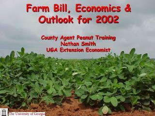 Farm Bill, Economics & Outlook for 2002