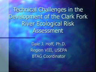 Technical Challenges in the Development of the Clark Fork River Ecological Risk Assessment