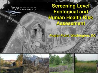 Screening Level Ecological and  Human Health Risk Assessment