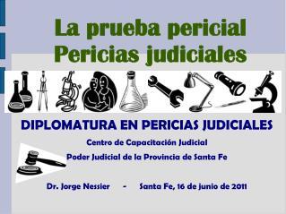 DIPLOMATURA EN PERICIAS JUDICIALES Centro de Capacitaci�n Judicial