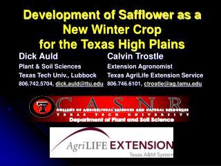 Development of Safflower as a New Winter Crop  for the Texas High Plains